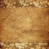 Floral grunge frame with autumn foliage on old parchment . — Stock Photo