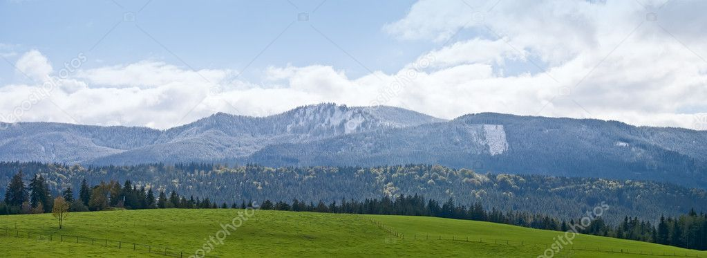Green field and mountain landscape in Bavarian Alps, Germany — Stock Photo #10202062