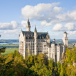 Neuschwanstein castle in Germany — Stock Photo #9047413
