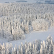 winter lanscape in finland — Stock Photo
