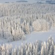 Winter lanscape in Finland — Stock Photo #9346480