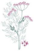 Valerian, weide plant — Stockvector