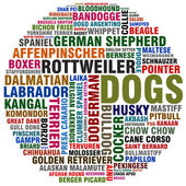 Dog kinds — Stock Photo