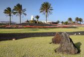 Beautiful Lanzarote's green square — Stock Photo