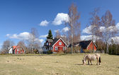 Idyllic Swedish countryside landscape — Stock Photo