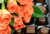 Roses and sweets — Stock Photo