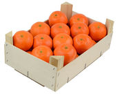 Box of clementines — Stock Photo
