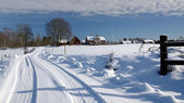Strong winter in Sweden — Stockfoto
