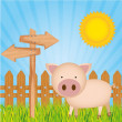 Illustration pig farm — Stock Vector