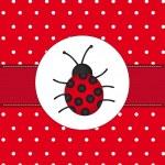 ������, ������: Ladybug
