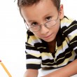 Stock Photo: Boy studying