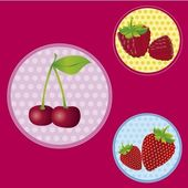 Labels with berries — Stock Vector