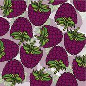 Cartoon blackberries grouped — Stock Vector