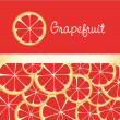 Stock Vector: Background of grapefruit slices