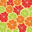Slices of citrus fruit — Vector de stock