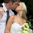 Stock Photo: kissing wedding couple