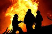 Three fire fighters and huge flames — Stock Photo