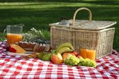 Delicious Picnic Spread — Stock Photo