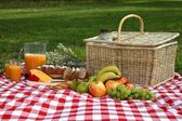 Delicious Picnic Spread — Stockfoto