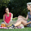 Gorgeous Women  Friends at Picnic - Stock Photo