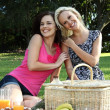 Gorgeous Smiling Women  Friends at Picnic - Stock Photo