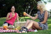 Gorgeous Women Friends at Picnic — Stock Photo