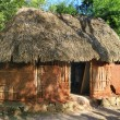 Traditional mayan home - Stock Photo
