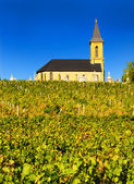 Kyrkan i beajolais, Frankrike — Stockfoto
