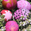 Some decorated easter eggs — Stock Photo