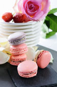 Lovely macarons — Stockfoto