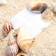 Blank paper beach sand starfish shells summer — Stock Photo #8252489