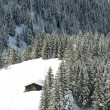 Chalet in winter — Stock Photo