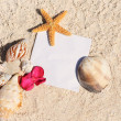 Blank paper beach sand starfish shells summer — Stock Photo #8378033