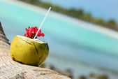 Coconuts on the beach — Stock Photo