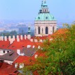 Prague city — Stock Photo #8862358