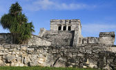 Mayan ruins of Tulum Mexico — Stock Photo
