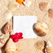 Royalty-Free Stock Photo: Blank paper beach sand starfish shells summer