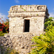 Mayan ruins of Tulum Mexico - ストック写真