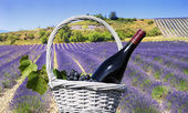 Lavender and red wine in the landscape — Stock Photo