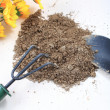 Many cultivate flowers tools with soil on desk. — Stok fotoğraf