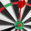 Dart hit the target on a butt target. — Stockfoto