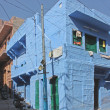 Blue Houses Of The Hindu Brahmin Caste — ストック写真