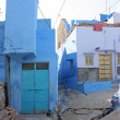 Blue Houses Of The Hindu Brahmin Caste — Stock Photo