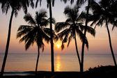 Beautiful golden sunset on the Varkala beach — Stock Photo