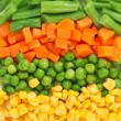 Different frozen vegetables — Stock fotografie