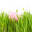 Egg easter in a grass - Stock Photo