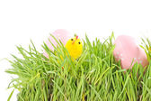 Egg easter in a grass on white — Stock Photo