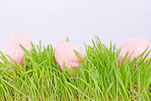Egg easter in a grass on lila — Stock Photo