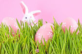 Egg easter in a grass on lilac — Stock Photo