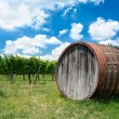 Wine, wine barrel in Tuscany — Stock Photo